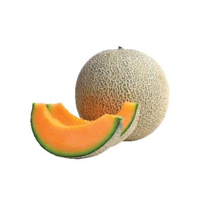 Cantaloupe image