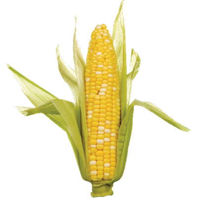 Sweet Corn, 1 ea image