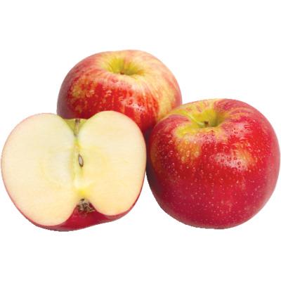 Honeycrisp Apple (Avg. 0.4lb) image