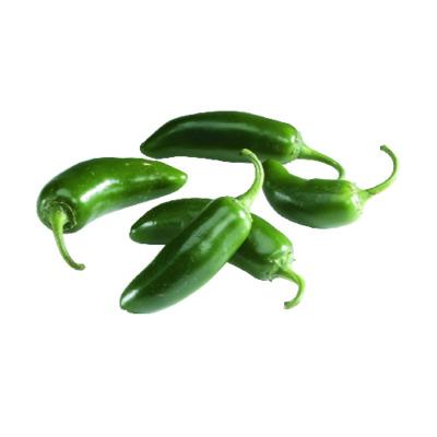 Jalapeno Pepper image